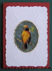 2006 - oiseaux a