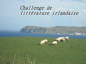 irlande_en_challenge