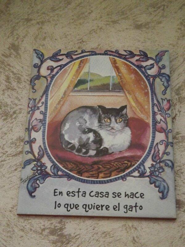 RONDE DES CHATS (3)