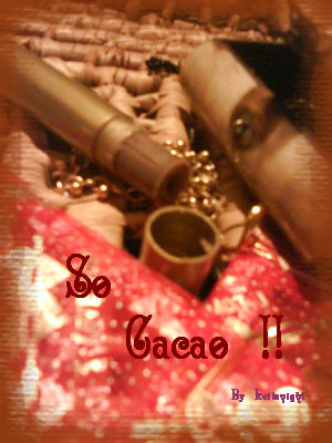 Baume_l_vres_barre_choco_mnthe