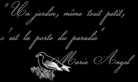 Citation Jardin 3