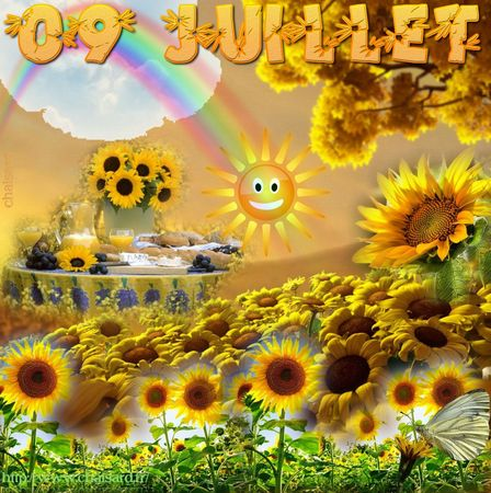 _ 1 CHAISARD 009 JUILLET