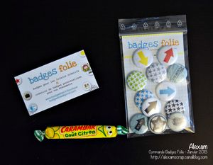 Alexam_comande Badges Folie