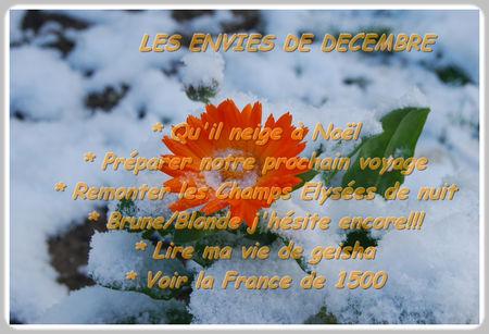 les_envies_de_d_cembre_cadre