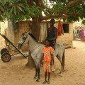 A cheval sur mon...