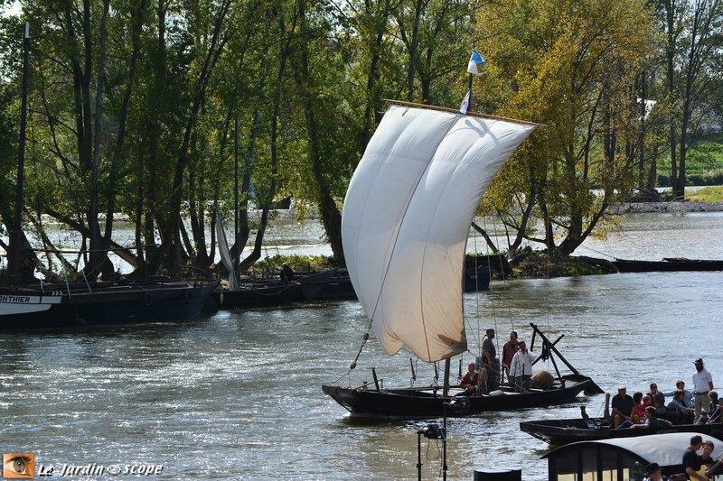 Festival de Loire 2015_8190