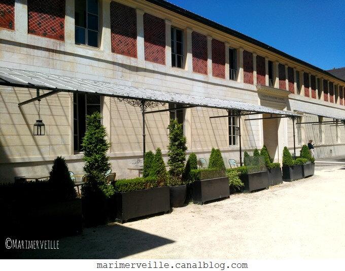 terrasses des belles plantes côté zoo jardin des plantes - Marimerveille