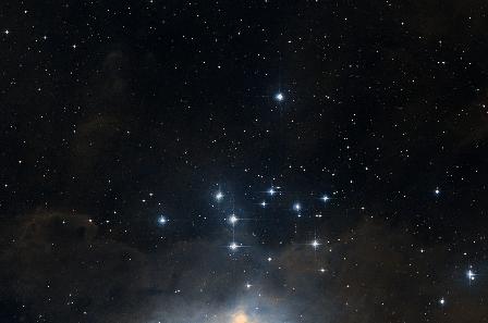 NGC1981