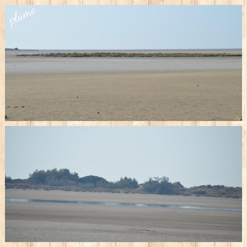 21 plage