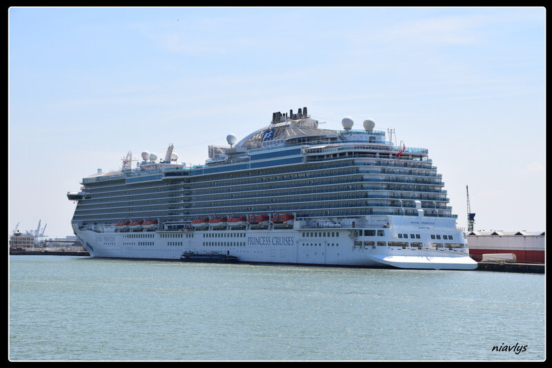royal princess 3