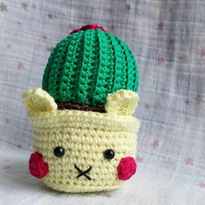 Cactus LAPINOU 4