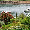 Bréhat, l'île aux fleurs