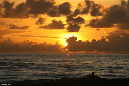 surfeur_at_sunset
