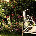 Windows-Live-Writer/jardin_D005/DSCF3858_thumb