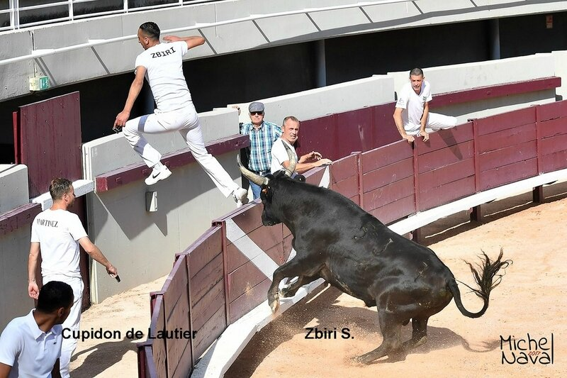 ISTRES 22