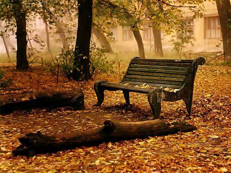 automne_79