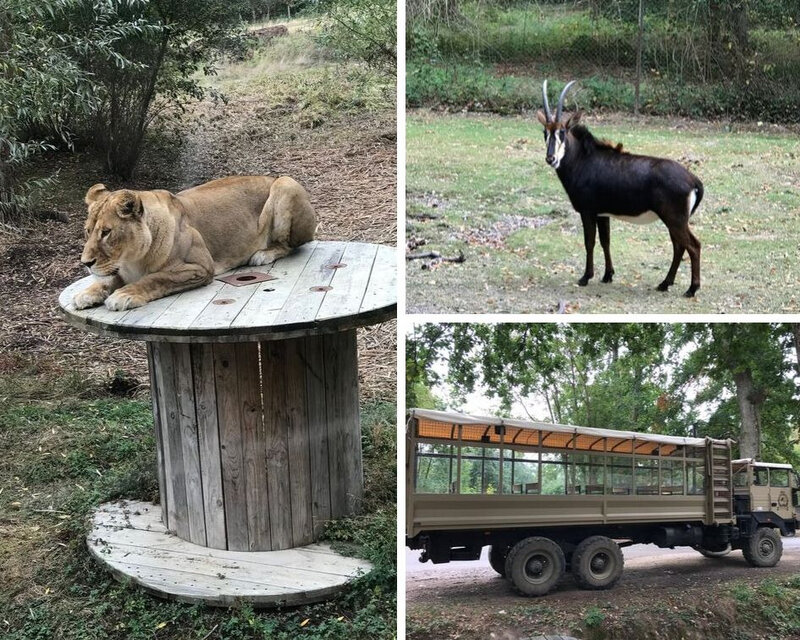 Safari en camion brousse ©Kid Friendly