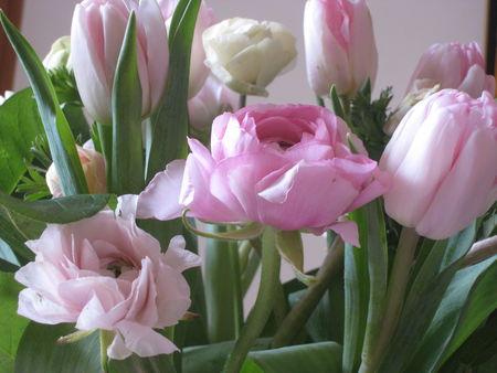 fleurs__31_