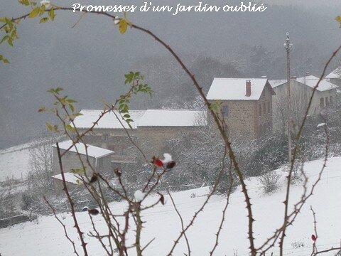 La neige de Brueghel dans mon jardin