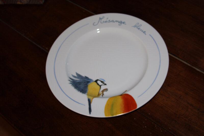 Assiette mésange bleue (1)