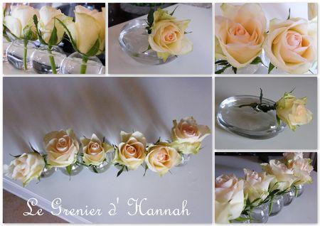 roses_janvier_2012