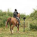équitation de pleine nature - rallye équestre (138)