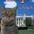 moka président