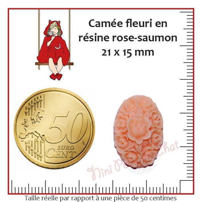 CAMFL-RES-SAUM-21x15