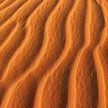 mauritanie22009-543