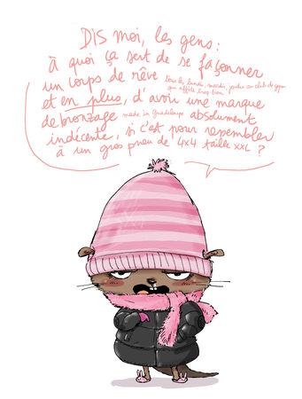 loutre_hiver_2009