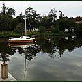 Lac 11101516