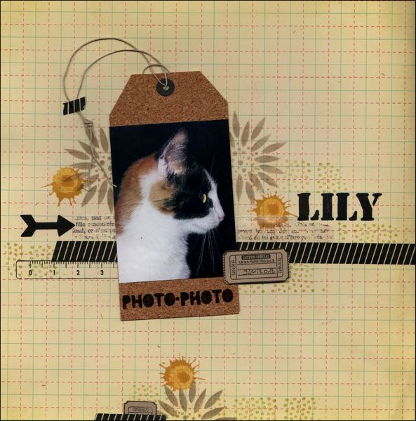 Lily 001