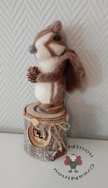 écureuil 7M
