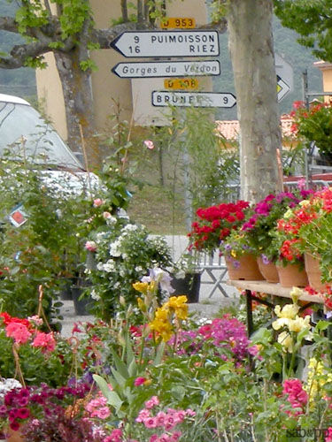 555_blog_manosque_march__fleurs