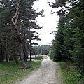 4_sortie Saugues 1ers Km