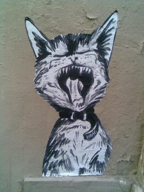 Le chat a faim, il miaule, griffe et sourit ...