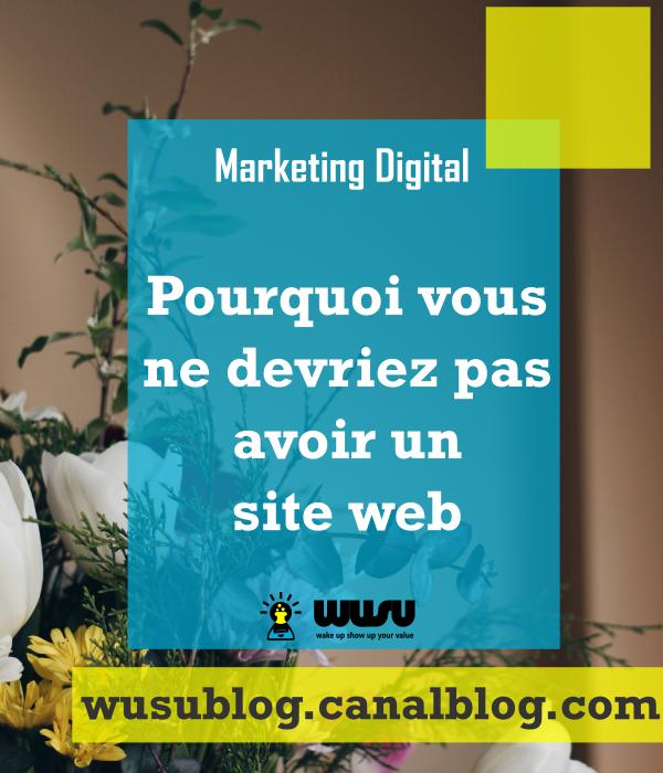 marketing-digital-winniendjock-siteweb-wusu-blog-2017