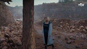 un TARDIS en arbre