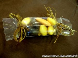 contenant-dragees-mariage-bapteme-communion-tube-etui-transparent-jaune-orange-moka-noir-raphia