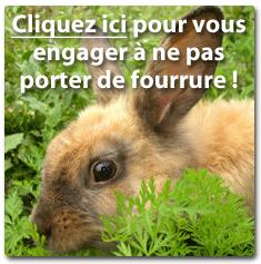 peta_fourrure