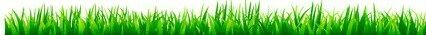 l-herbe-verte