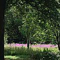 Une vue de Kew Gardens par dessus la barrière