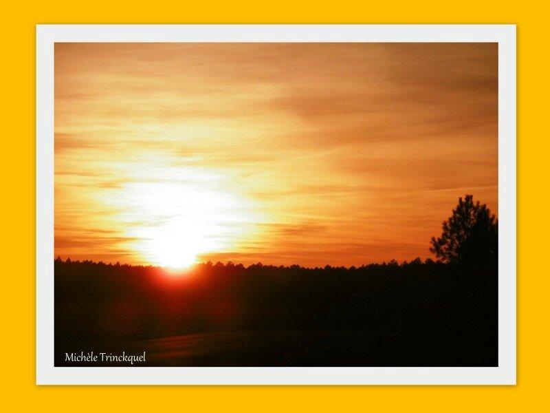 Coucher de soleil et Rouge-gorge 211217