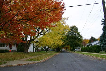 Fall_35