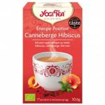 energie-positive-canneberge-hibiscus-1x17-sachets