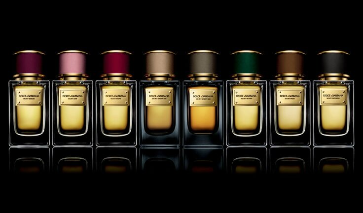 Parfums Collection Vetiver Le Velvet Dolceamp; Gabbana OkuwPXZiTl