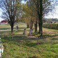 cyclocross carsan 01.11.2007
