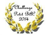 0 Challenge Petit bac 2014