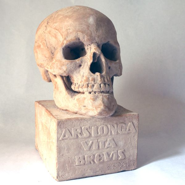 crâne03