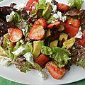 Salade fraise § avocat